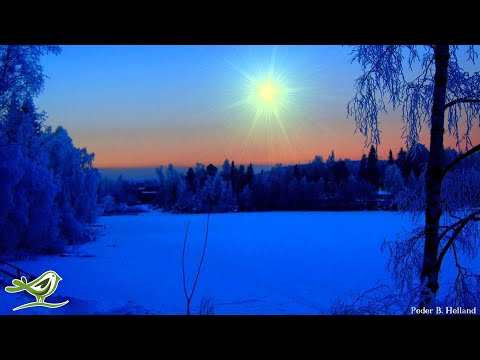 2 Hours of Instrumental Christmas Music   Christmas Songs Playlist   Relaxing Piano Solo