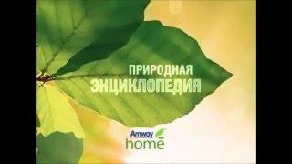 видео Где выбрать товары для дома
