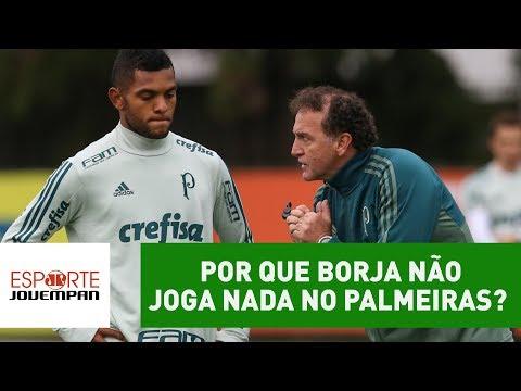 É enganador? Por que Borja não JOGA NADA no Palmeiras?
