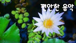 편안한 불교 휴식음악 / Buddist Relaxing  Music