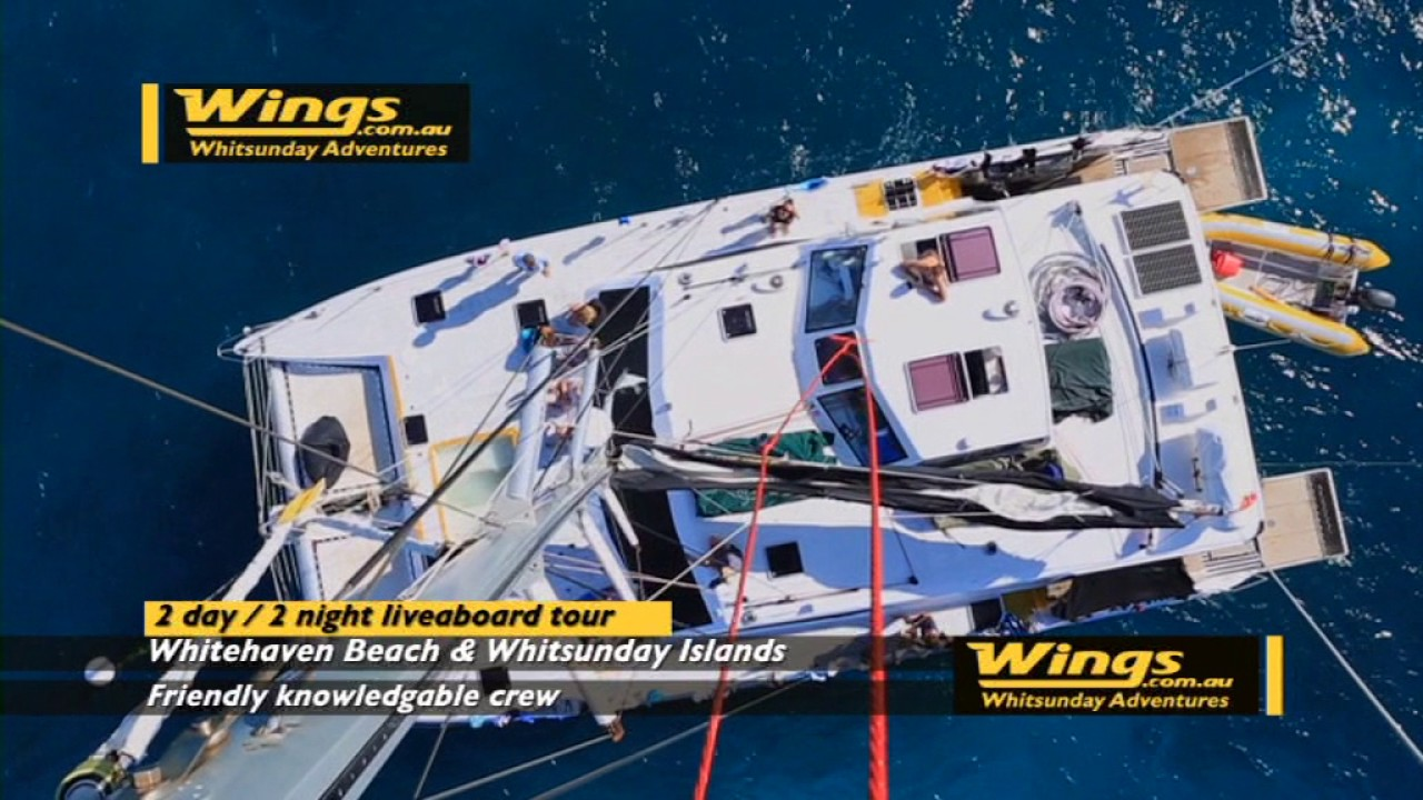 Wings com au - Wings Whitsunday Adventures