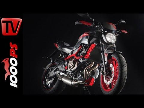 Yamaha MT-07 Moto Cage | Preis -Technische Daten-Details