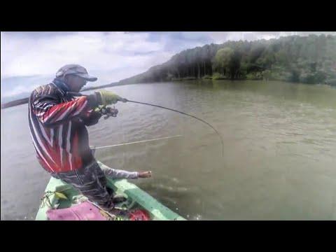 Casting Ikan Bulan Sungai Merbok