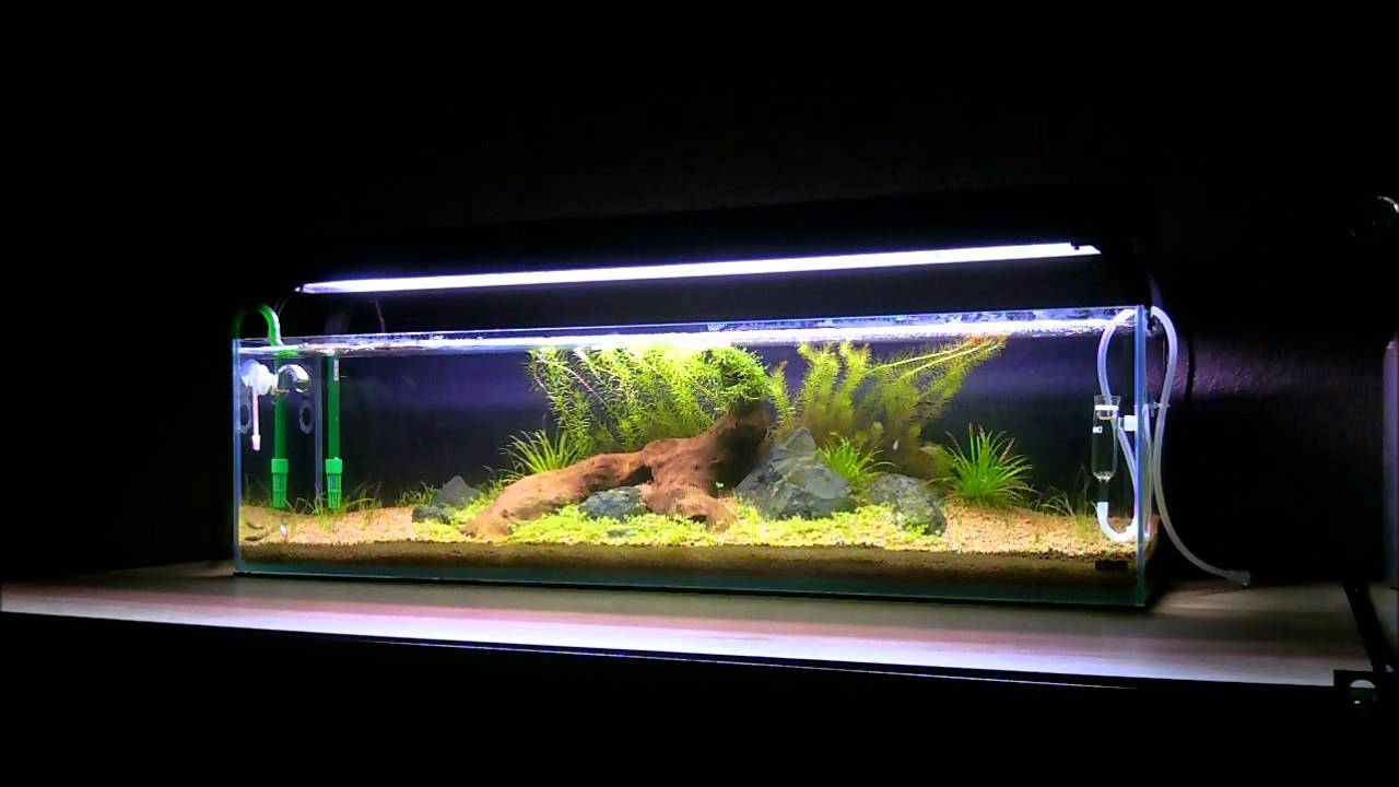 Mr aqua 12g long youtube for What do i need for a fish tank