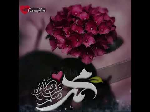 صلوا على رسول الله اللهم صل وسلم وبارك على نبينا محمد