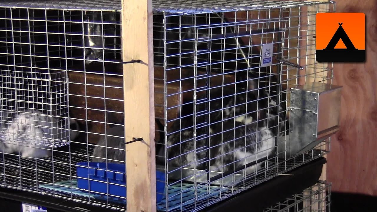 How to make a frame kit for a rabbit cage cheap and easy youtube - How to make a rabbit cage ...