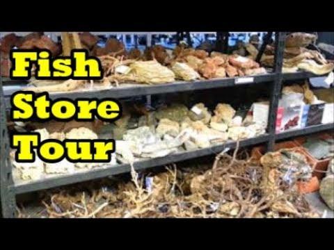 Aquarium Fish Store Tour - Nature Aquariums & Watergardens