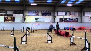 Dozer grade 3 jumping at Wyre