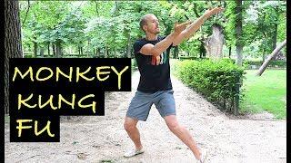 REAL KUNG FU - MONKEY STYLE