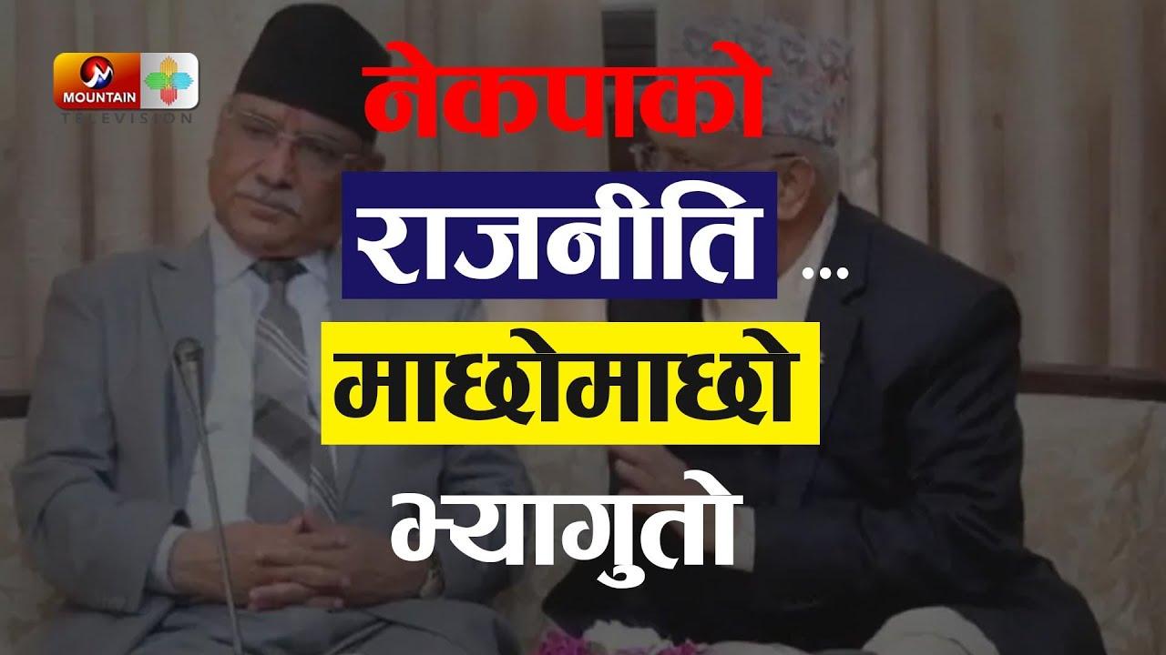 Download नेकपाको राजनीति 'माछोमाछो भ्यागुतो' | Nepal Political News | Nepal News Today | MTV