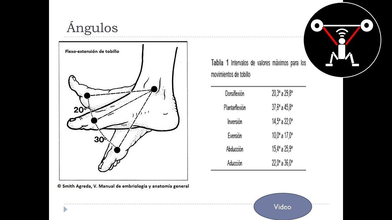 Biomecánica del Tobillo en el Fútbol, Anatomía - YouTube