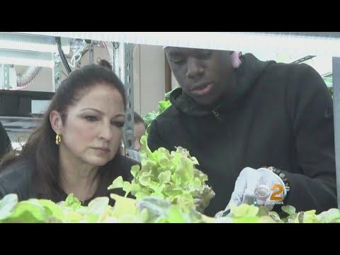 Gloria Estefan Visits Bronx School's Student Farming Project