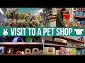 Visit To Pet Shop (Jollyes)