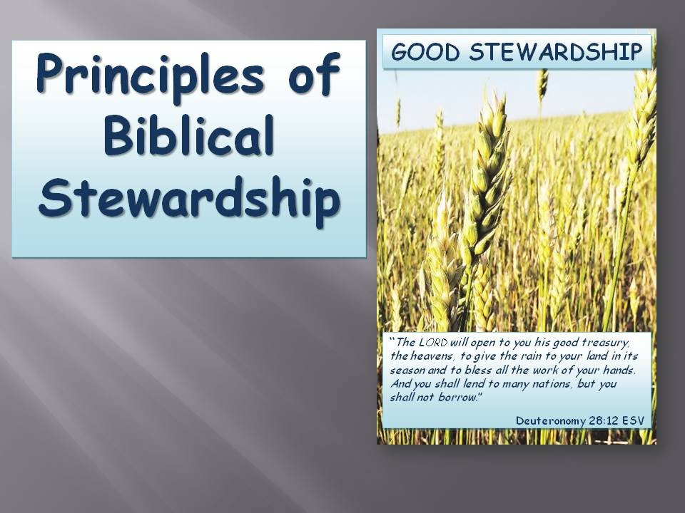 stewardship in the bible pdf