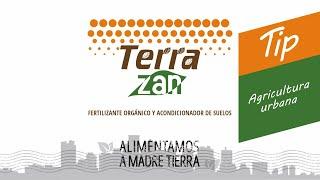 Terrazan | Tips para la finca | Abono en agricultura urbana