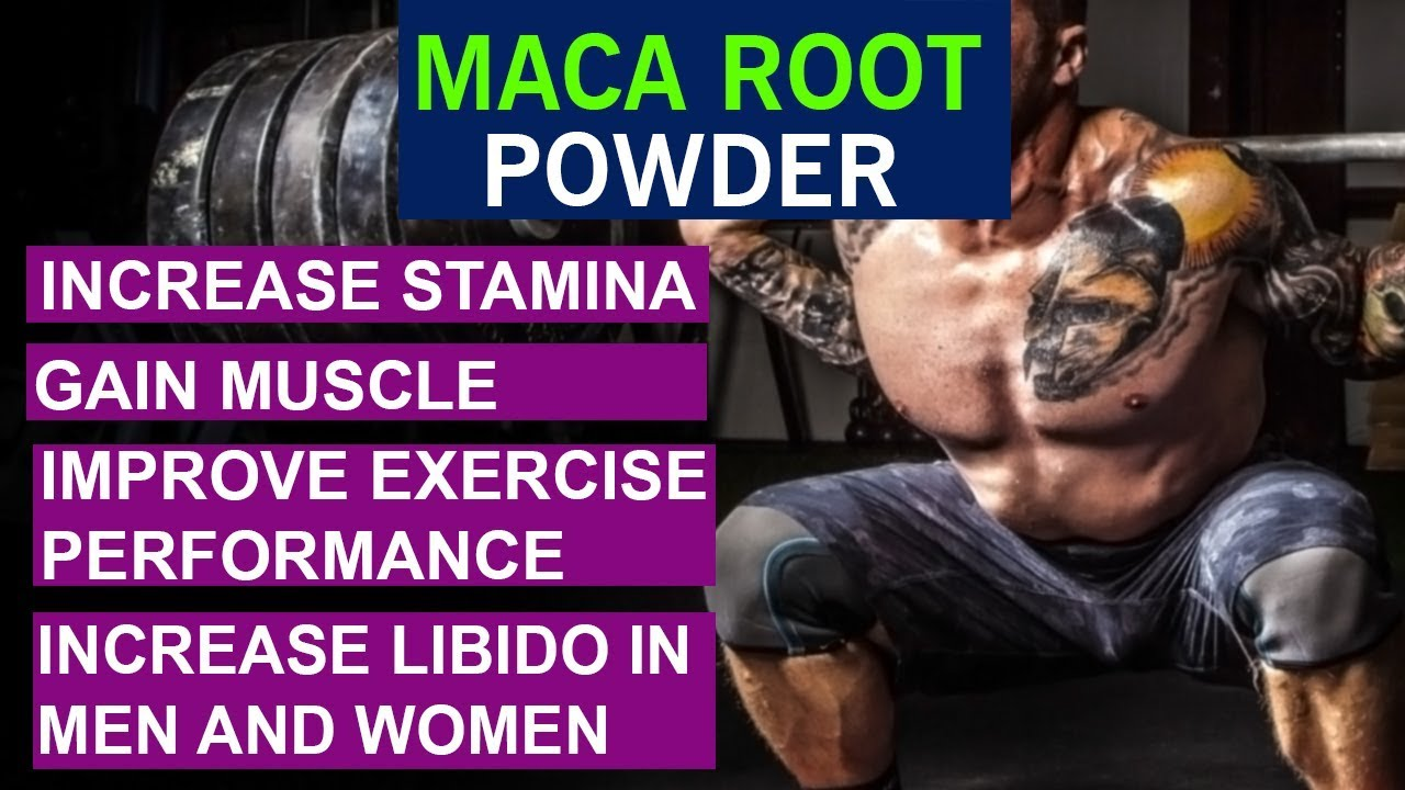 How To Increase Stamina And Gain Muscle With Maca Root Powder | Benefits  And Side Effects - Hindi