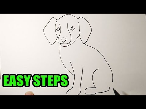 How To Draw A Dog Sitting Down Easy To Follow Youtube
