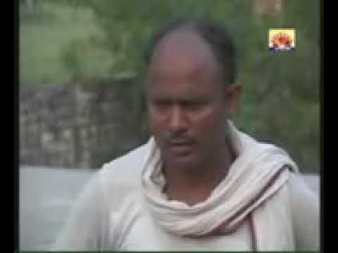 Kauwa niyar. Chahi Babu hamke mehariya