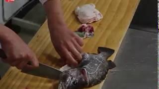 일식요리 전문가의 쉬운 설명! 돗돔손질법, 회뜨기