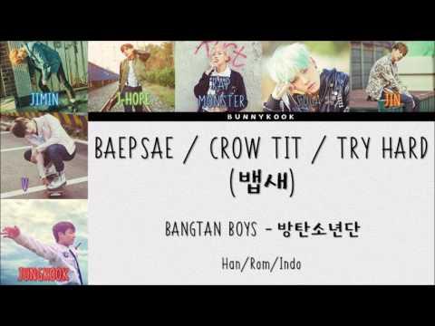 BTS (방탄소년단) - 뱁새 (Baepsae/CrowTit /Parrotbill) [HanRomIndosub]