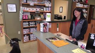 Call us today at (616) 392-1835. At East Holland Veterinary Clinic,...