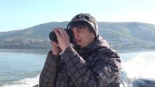 Рыбалка на Камчатке видео - ловля палтуса
