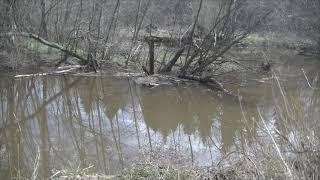 Рыбалка на Озернинском водохранилище 18 апреля 2021 года