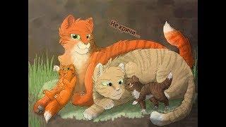 Коты воители - Не кричи...