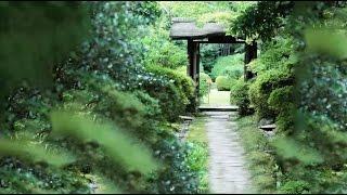 日本國寶茶室:如庵