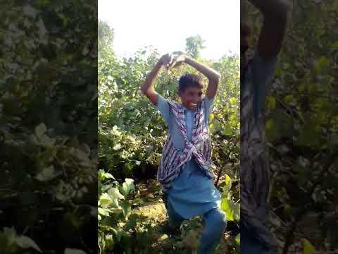 Dj Punjab com