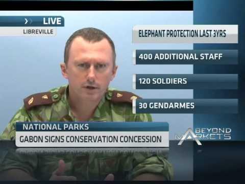 Gabon Signs Conservation Concession