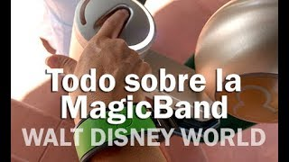 Todo sobre la MagicBand - WALT DISNEY WORLD