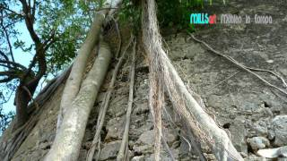 Mühlen auf Guadeloupe / Karibik v. Inge Agnes Preuschoff-Perrier