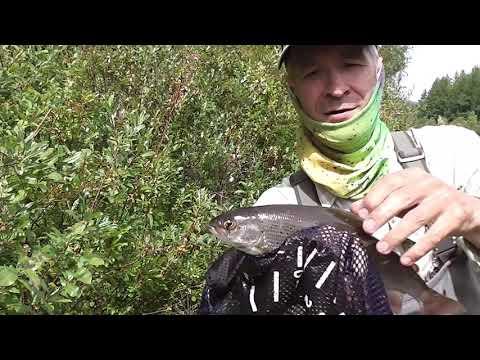 Рыбалка на Турке