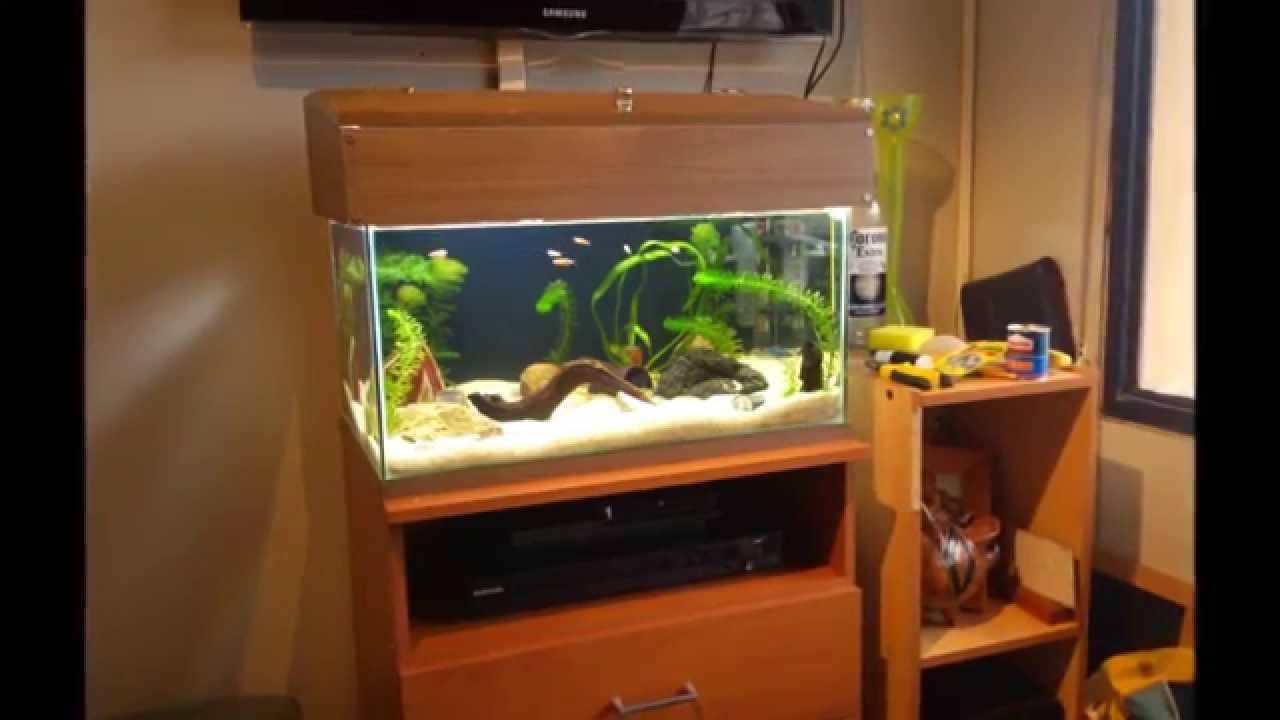 Montaje acuario y creaci n de la tapa youtube - Pecera de pared ...