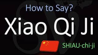How To Pronounce Xiao Qi Ji? (小奇迹)   Giant Panda Cub Name Pronunciation
