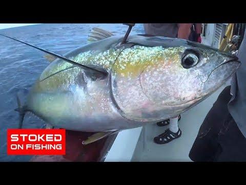 Independence Long Range Fishing, part 2
