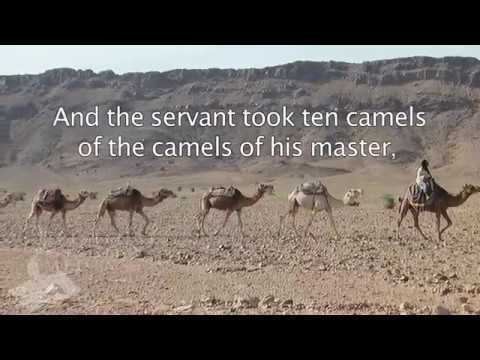 Genesis 24 10 And The Servant Took Ten Camels Of The
