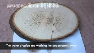 Textol Pro on Wood