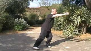 wu style tai chi short form by michael w acton