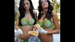 хот-дог от Chicago dogs