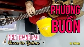 PHƯỢNG BUỒN (Cover) ♥ NHÃ THANH CAO