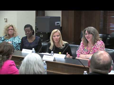 05-06-2015 Little Rock Hearing, Panel 2, Contd.