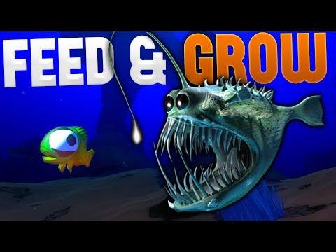 DEEPEST DARKEST TERROR FISH - Angler Fish & Mahi Mahi - Feed and Grow: Fish