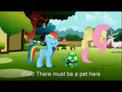 My Little Pony: Find A Pet Song (Cover)