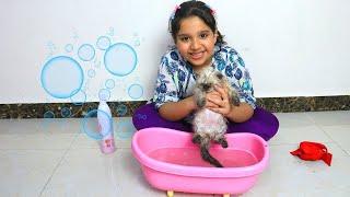 शफ़ा ने पहली बार नहलाया अपने बिल्ली के बच्चे को।