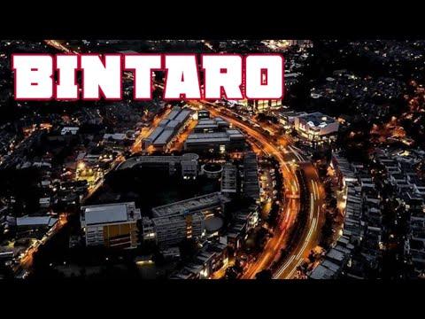 View Bintaro # drone