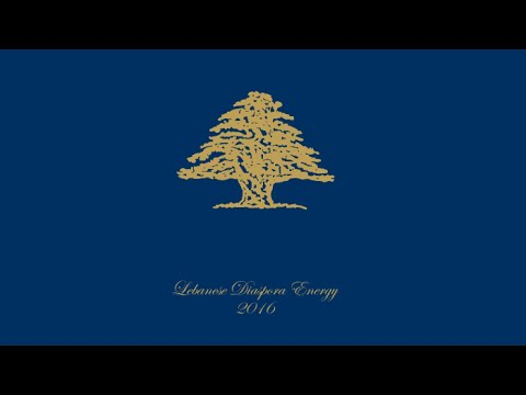 Lebanese Diaspora Energy 2016 Event Resume - YouTube