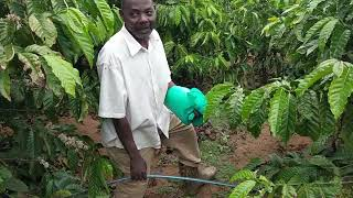 Irrigation - Step 5