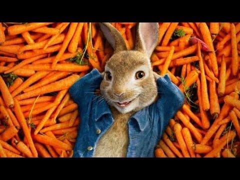 Кролик Питер момент на русском